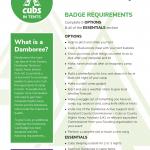 Emerald Information Sheet